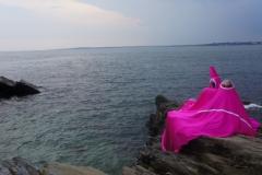 coastlines-01350